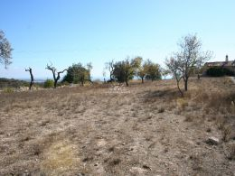 Plot of land with project for a single storey villa near Boliquieme