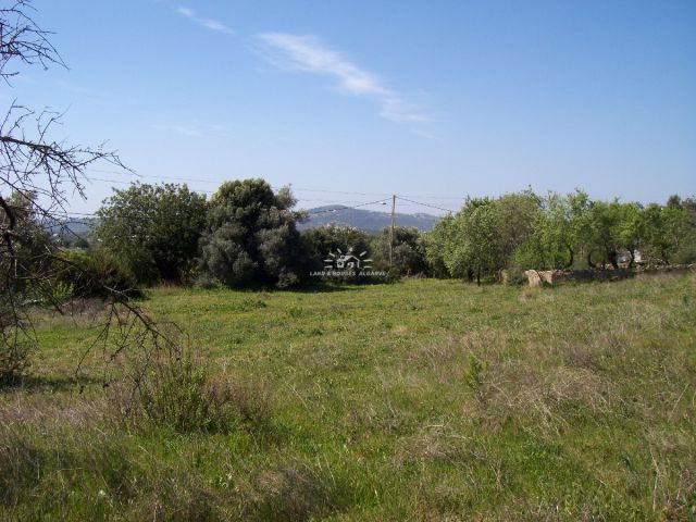 Quiet and secluded plot for sale with approved building viability near Sao Bras de Alportel