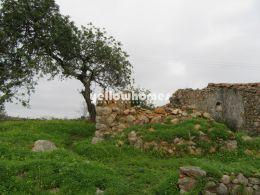 Ruine auf einem nach Süden ausgerichteten Grundstück...