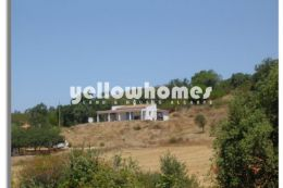 3 properties on a large plot with plantation of...