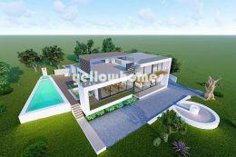 Project for a fantastic contemporary house with amazing...