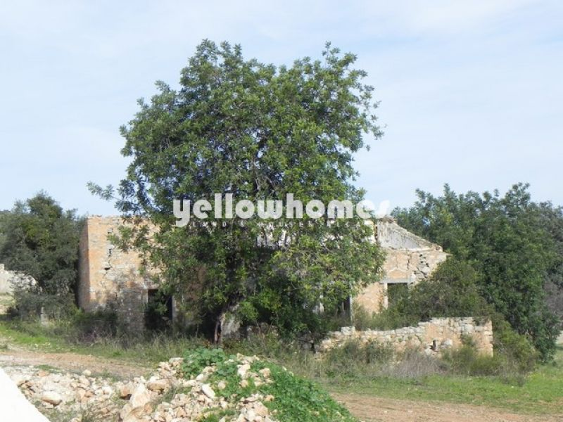 Building land just 4 kms from the city of Loule