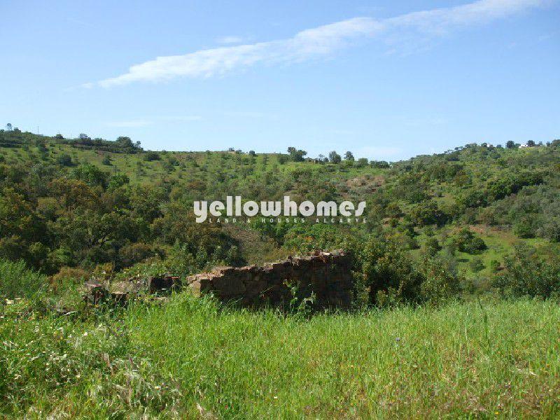 Terreno com grande ruína e vista para o campo
