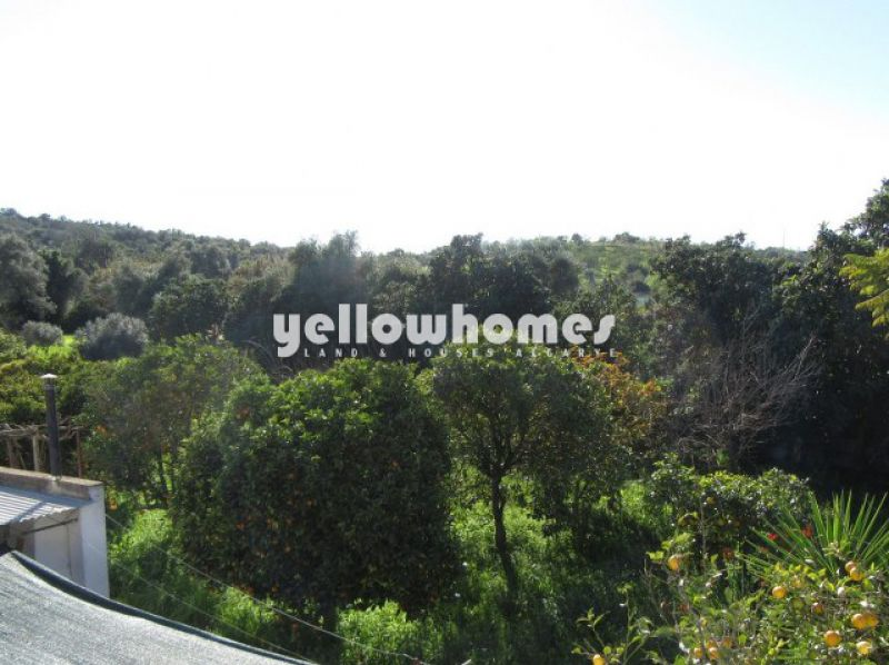 Three independent properties on a large plot near Moncarapacho