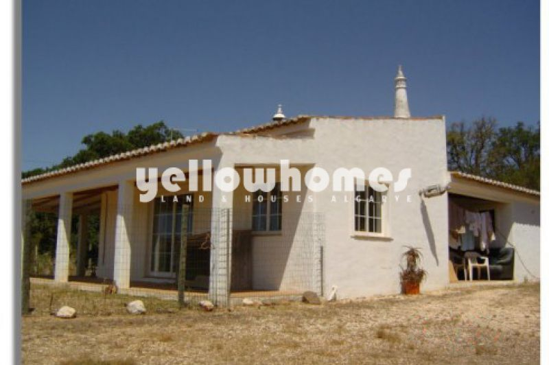 3 properties on a large plot with plantation of Cork and Pine trees