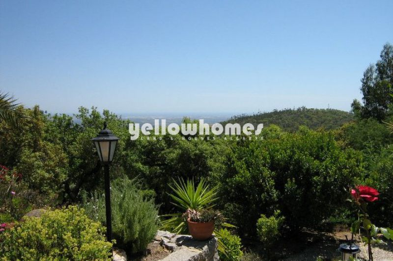 2 large Properties set on a 1.5 ha terraced plot in Monchique for sale