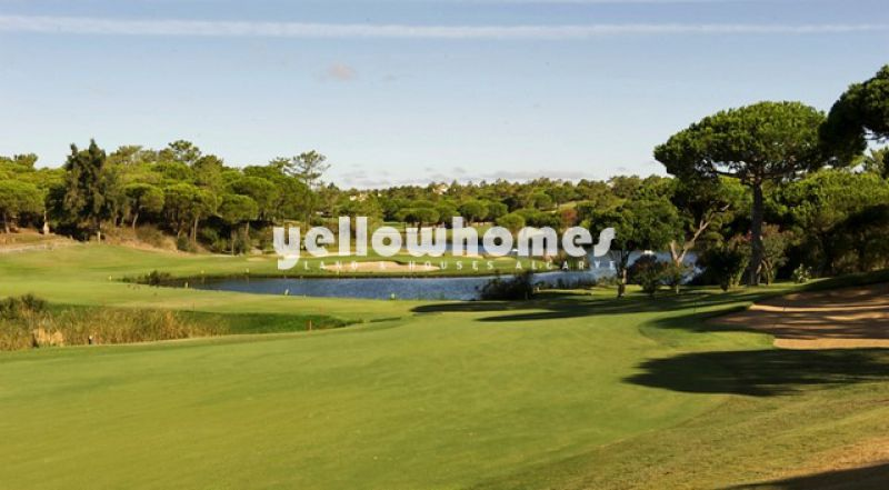 Beautiful Plot in Quinta do Lago