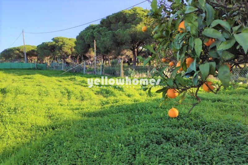 Atrativa moradia V4 implantada num grande terreno perto de Vilamoura